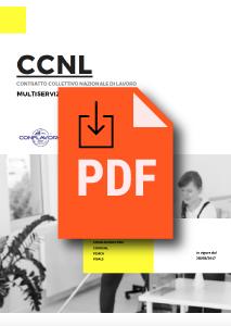 Ccnl commercio terziario distribuzione servizi turismo for Ccnl terziario distribuzione e servizi